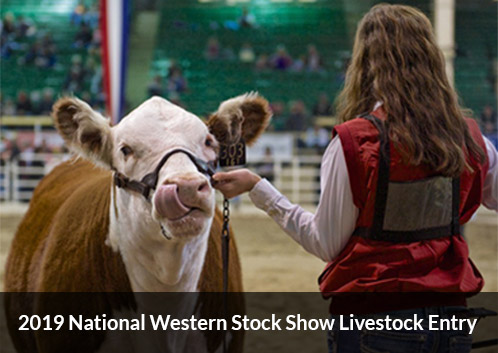 2019 National Western Stock Show Livestock Entry